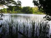 Loughrigg Tarn