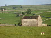 Hartington
