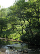 River Manifold