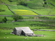 Field Barn, Yorkshire